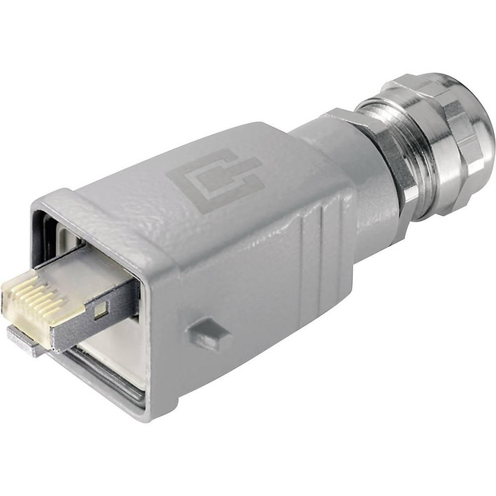 STX V5 RJ45-vtični komplet verzije 5 Vtič, raven, polov:8P8C J80026A0018 iz aluminija Telegärtner J80026A0018 1 kos