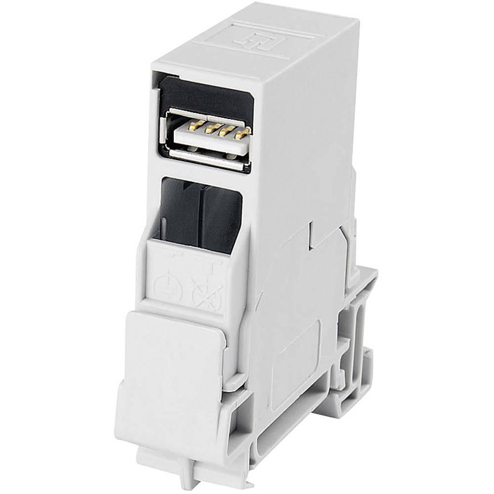 USB 2.0 Kobling, indbygning Telegärtner J80023A0004 Lysegrå 1 stk
