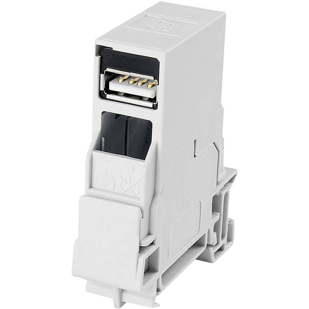 USB 2.0 Kobling, indbygning Telegärtner J80023A0006 Lysegrå 1 stk
