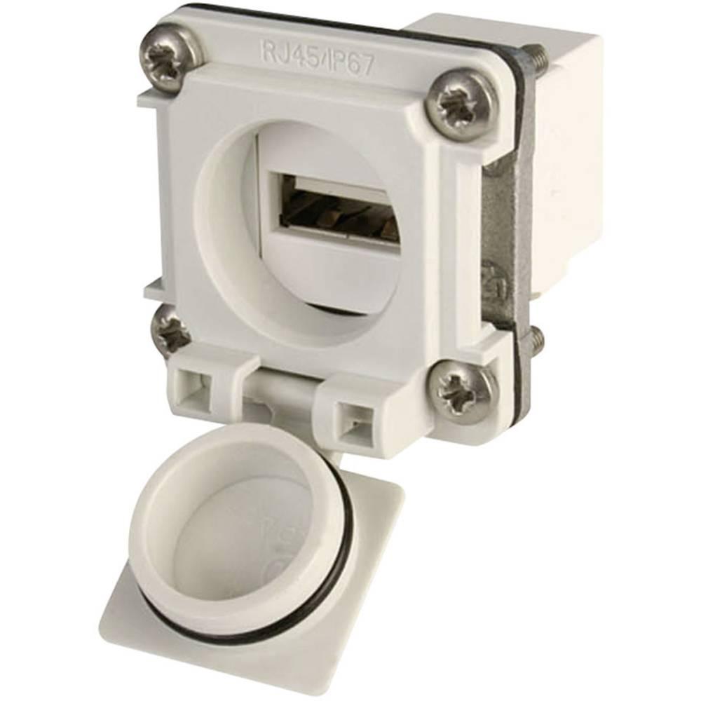 USB 2.0 Kobling, indbygning Telegärtner J00020A0480 Lysegrå 1 stk