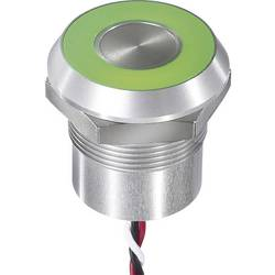 Senzorski gumb 12 V 0.2 A APEM CPB3210000NGSC IP68, IP69K tipkalno 1 kos