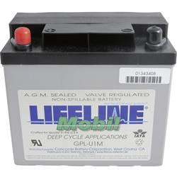 LifeLine GPLU1M 12V 33Ah GPLU1M Svinčeni akumulator 12 V 33 Ah Svinčevo-koprenast (Š x V x G) 196 x 175 x 132 mm M6-vijačni prik