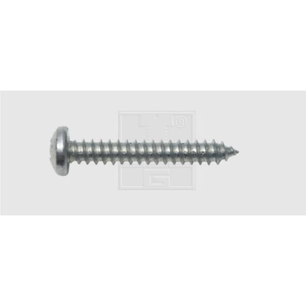 Plåtskruv 3.5 mm 19 mm Stjärnskruvmejsel Philips DIN 7981 Stål förzinkad 100 st SWG