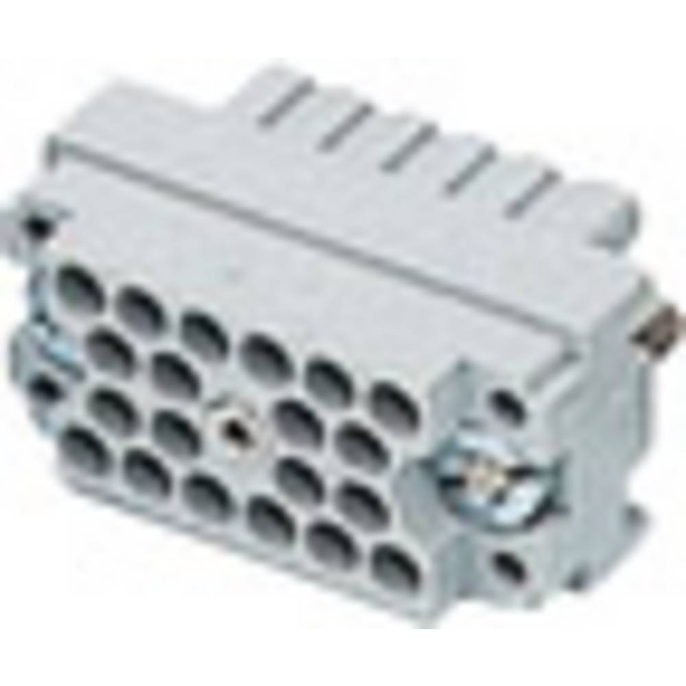Stiftindsats EDAC Serie (Stik EDAC) 516 (value.1361191) 516-020-000-302 Samlet poltal 20 1 stk