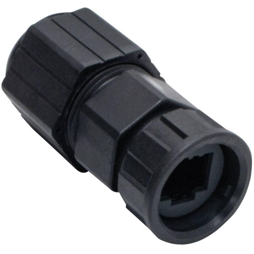 Sensor-/Aktor-datastikforbinder RJ45 koblingskabinet Pol-tal (RJ): 8P8C Amphenol LTW 2610-0605-02 RCP-00BMMS-TLM7001 1 stk