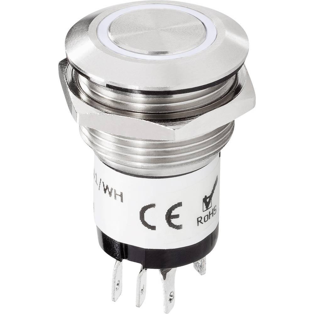 Tipka za zvono 1-struka 1227541 Renkforce plemeniti čelik, bijela 24 V/1 A