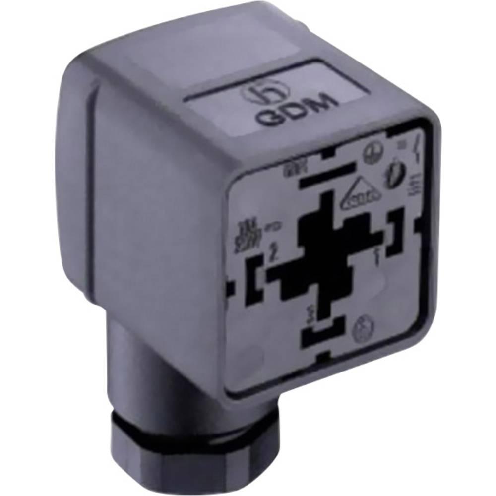 Ventil plug GDM21F6-v44 Belden GDM21F6-V44 Transparent 1 stk