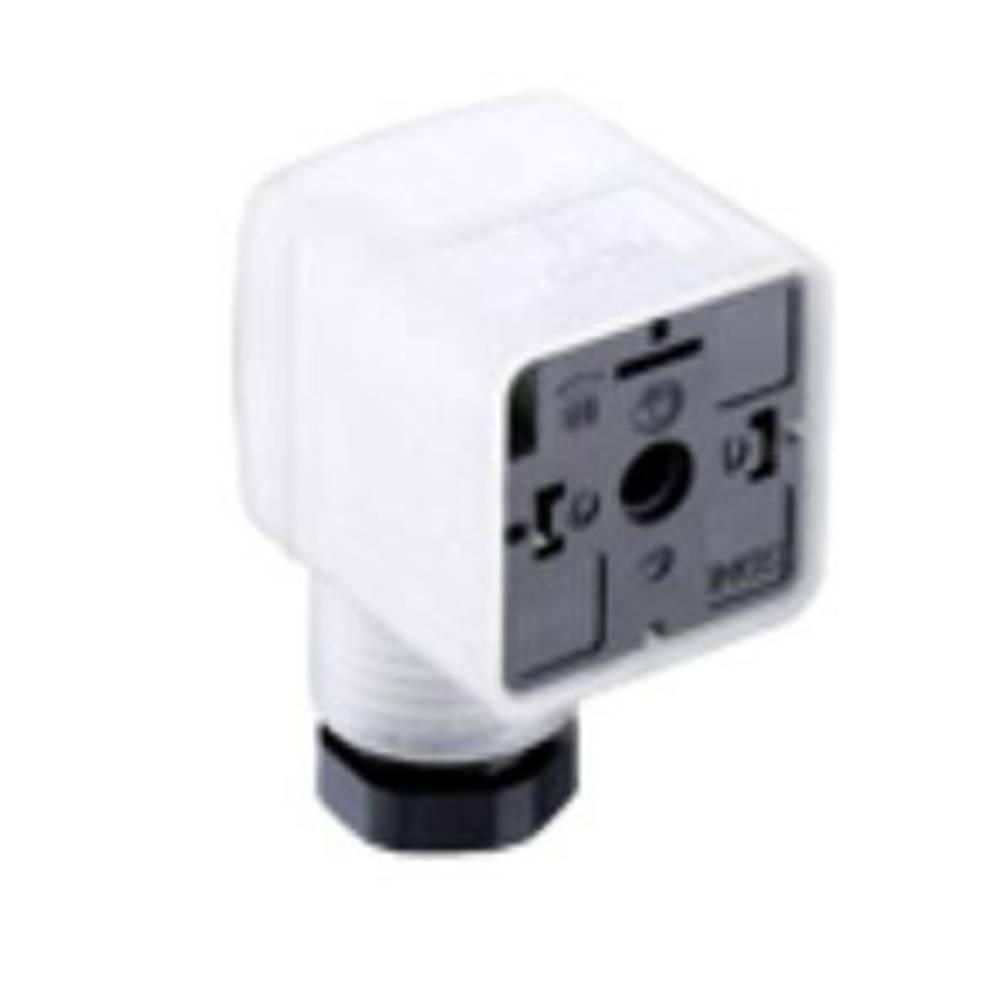 Ventilstikforbindelse Belden GDM21F6-L14 Transparent 1 stk