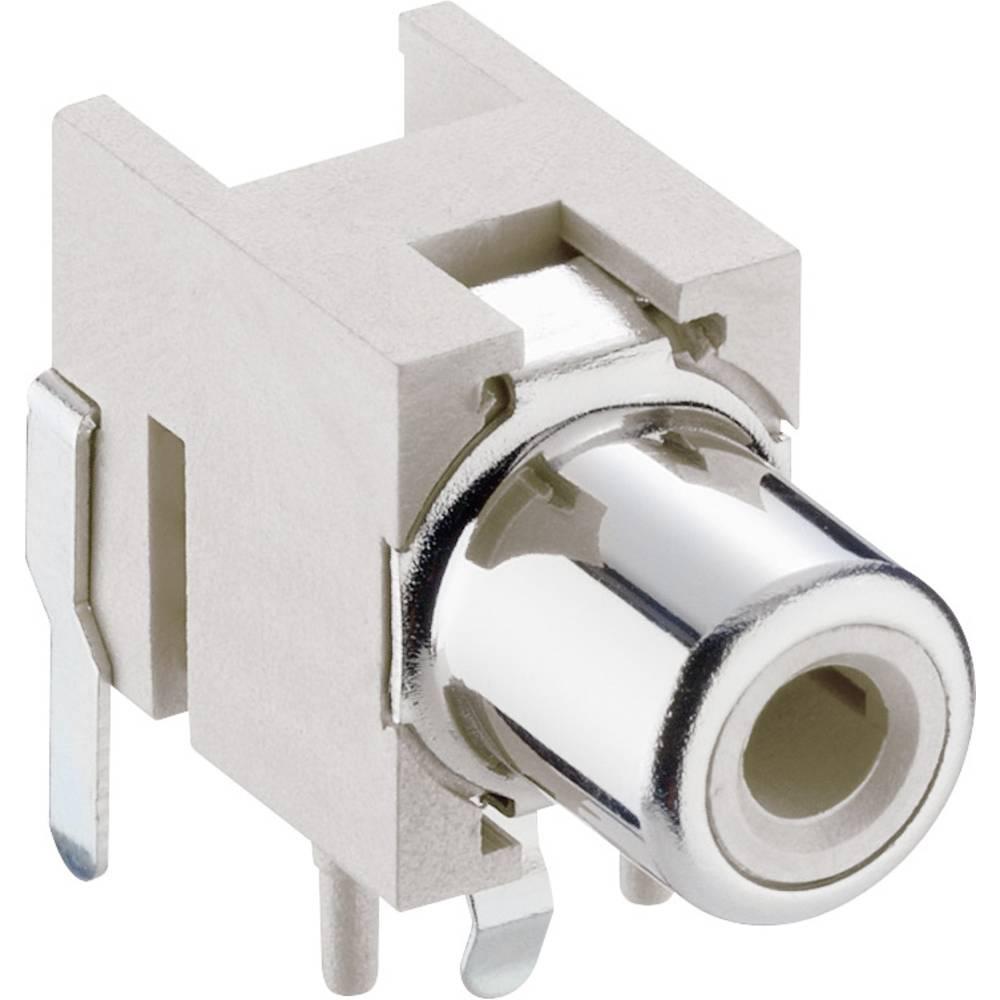 Činč-vtični konektor za vtičnico, vgradni horizontalen bele barve Lumberg 1553 02 weiss 1 kos