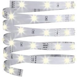 LED-trakovi-osnovni komplet z vtičem 12 V 300 cm toplo-bele barve Paulmann YourLED ECO 70428