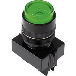 LED signalna lučka, zelene barve 12 V TRU Components Y090E-D/G/12V
