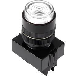 LED signalna lučka, bele barve 12 V TRU Components Y090E-D/W/12V