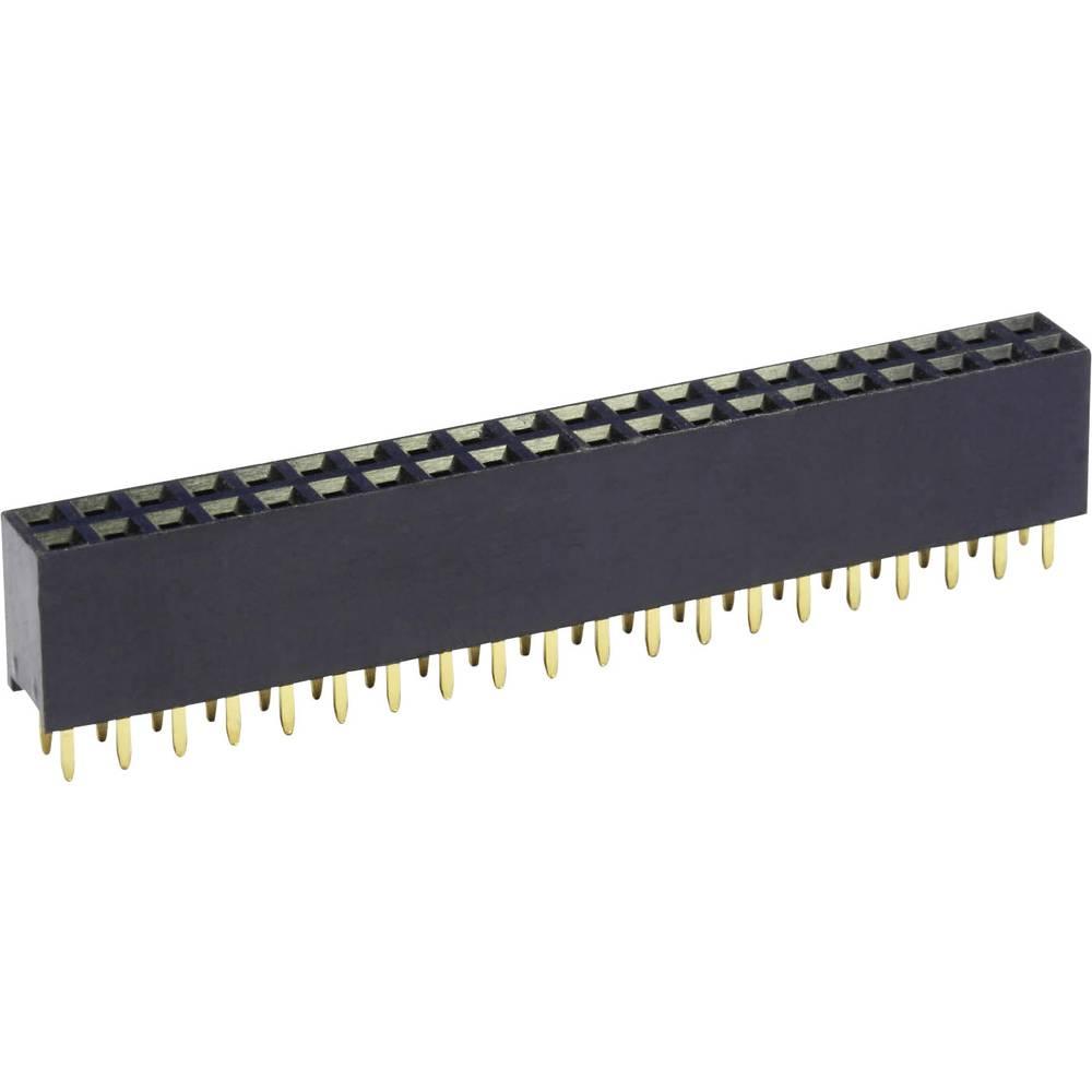 Bøsningsliste (standard) econ connect BL24/2G8 1 stk