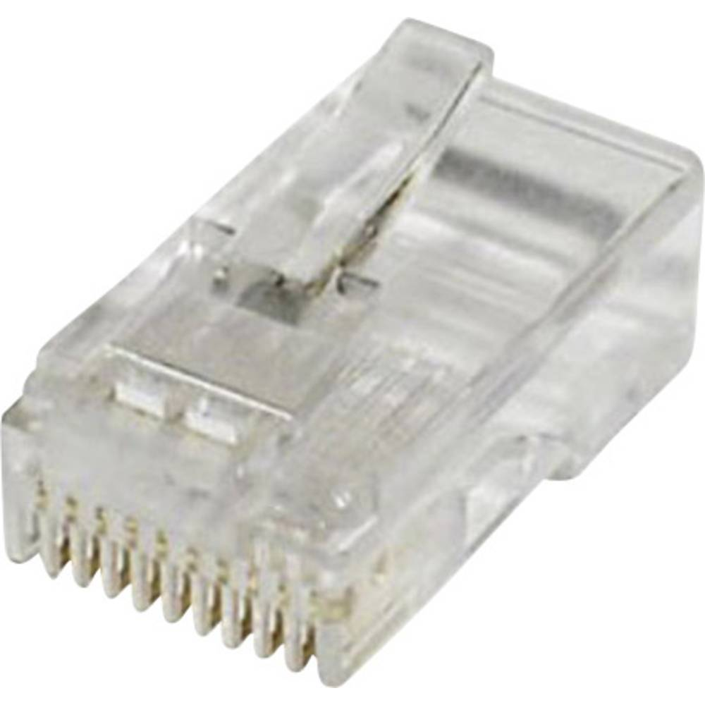Modularni vtič, raven, polov:10 MPL10/10R prozoren econ connect MPL10/10R 1 kos