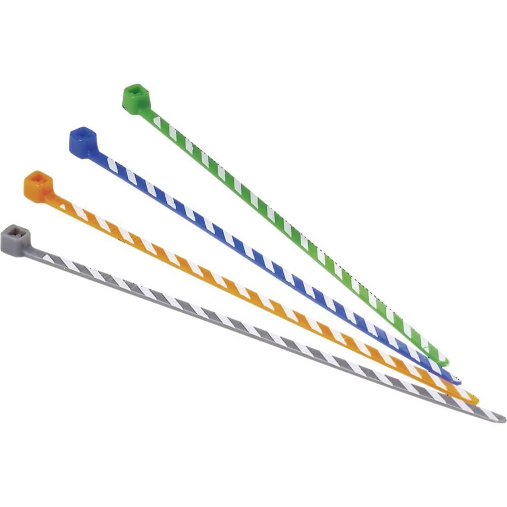 Vezice za kabele 102 mm sive boje, bijele boje, s kodiranjem u boji Panduit PLT1M-L8-10 50 kom