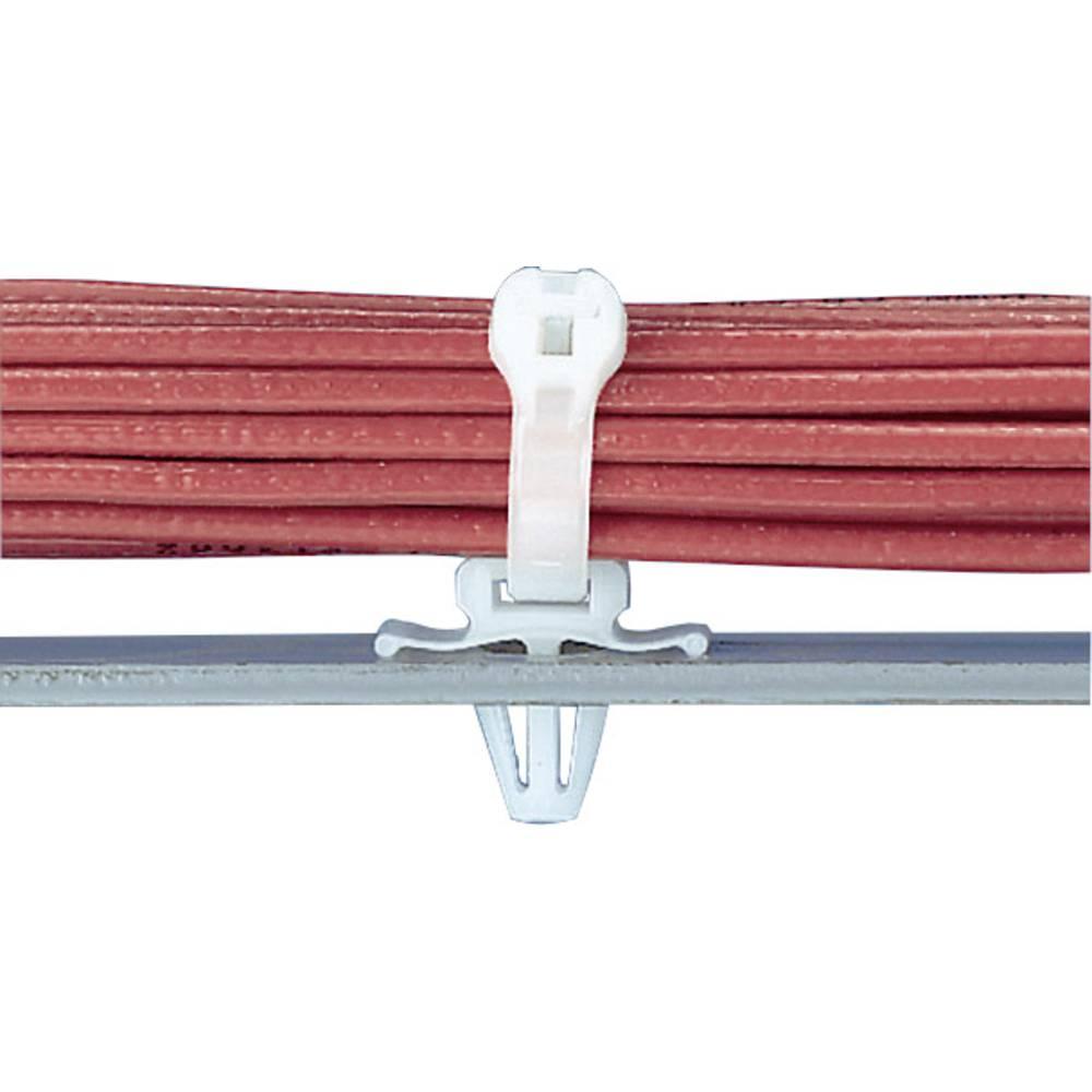 Utični držač kabelskih vezicaTM2PWH25-C prirodna boja sadržaj: 1 komad