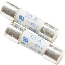 Beha Amprobe FP160 varovalka za multimeter FP160, 10 A/600 V, 1990718