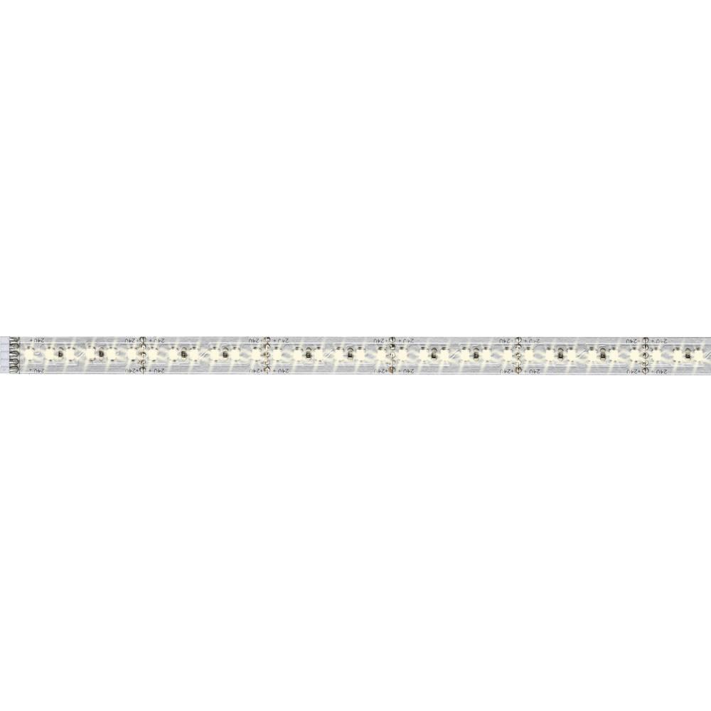 LED traka MaxLED 1000 70571 Paulmann produžetak s utikačem 24 V 50 cm toplo-bijelo svjetlo