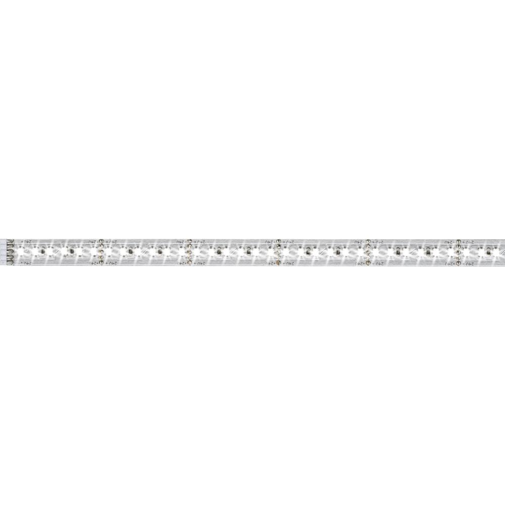 Razširitev za LED-trakove z vtičem 24 V 50 cm dnevno-bele barve Paulmann MaxLED 1000 70572