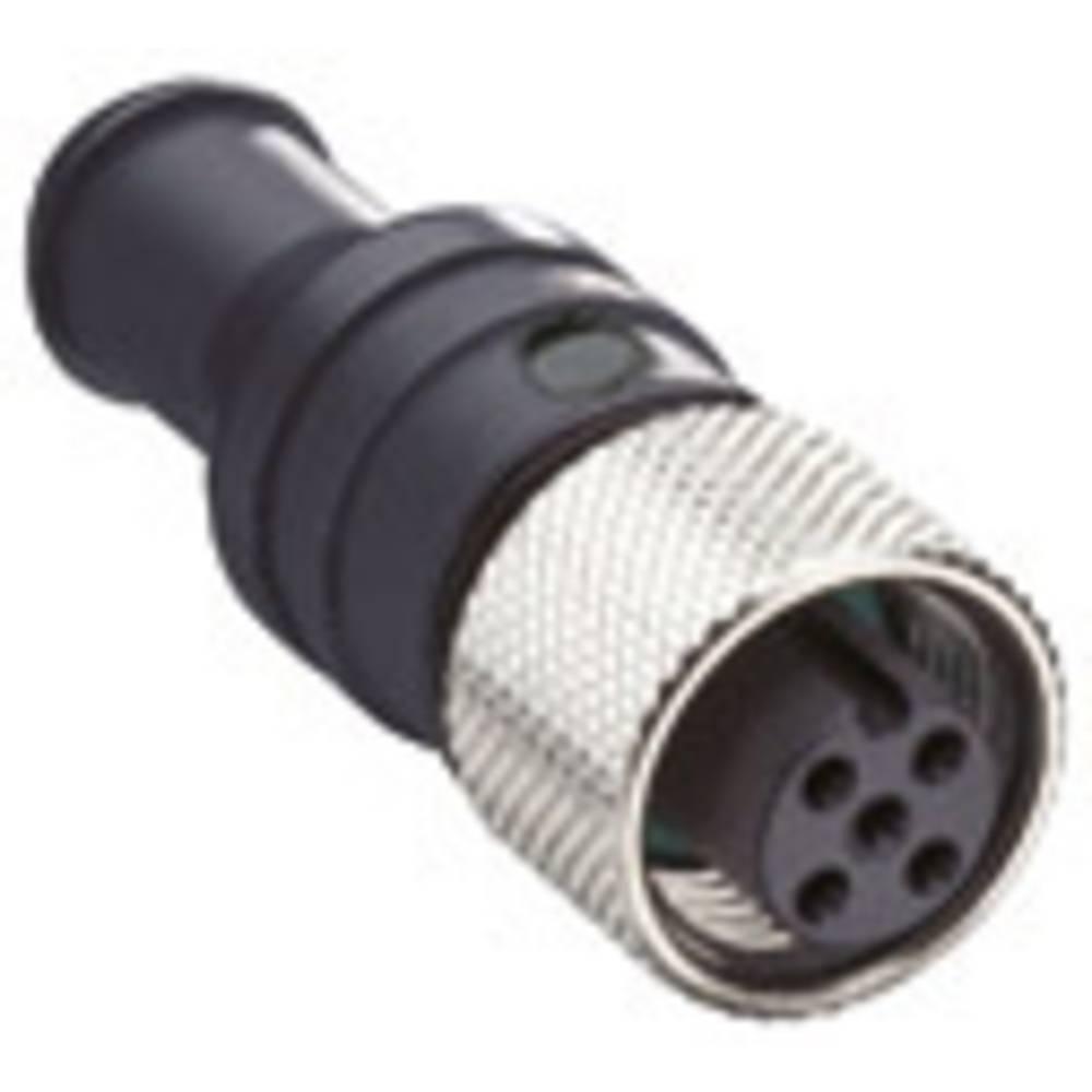 Sensor-/Aktor-datastikforbinder Belden 0939 CTX 102 1 stk
