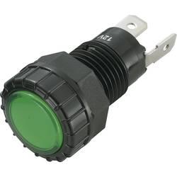 LED signalna lučka, zelena 12 V/DC SCI R9-122L1-01-BGG4