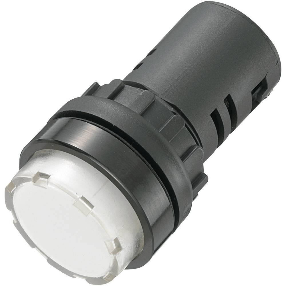 LED signalna lučka, bele barve, 24 V/DC 24 V/AC TRU Components AD16-22ES/24V/W