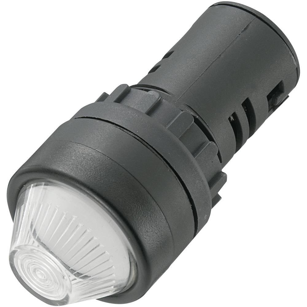LED-signallampe TRU COMPONENTS 140419 12 V/DC, 12 V/AC 20 mA Hvid