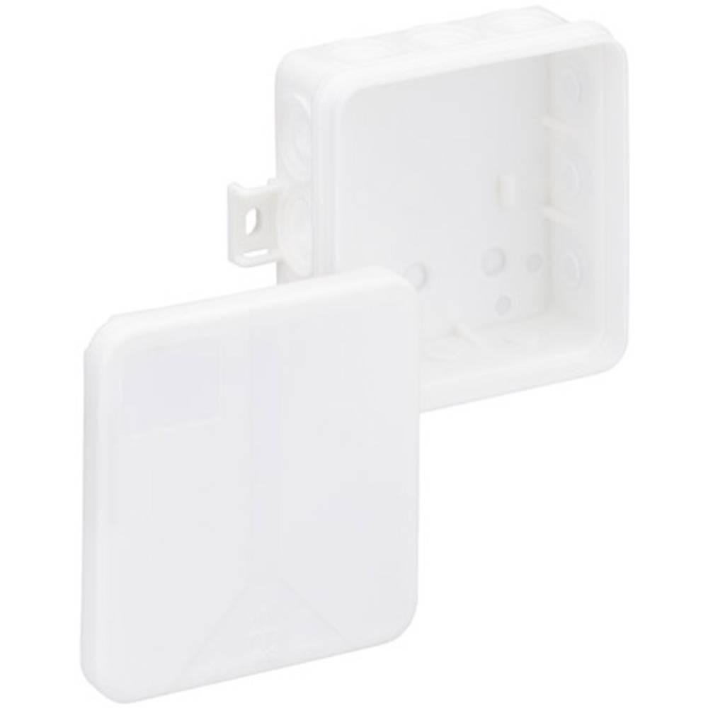 Izolacijska razvodna kutija i 12-L/w 33261201 Spelsberg bijela IP55