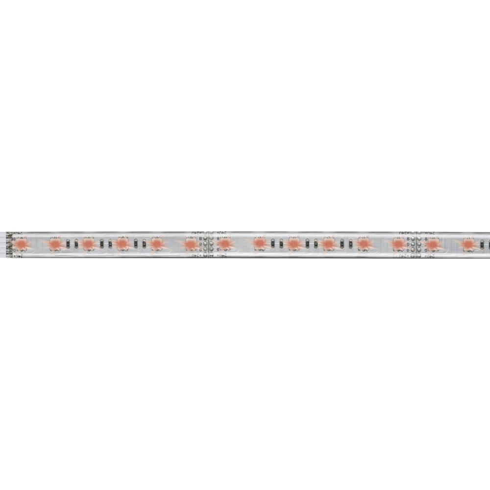 Razširitev za LED-trakove z vtičem 24 V 50 cm RGB Paulmann MaxLED 1000 70658