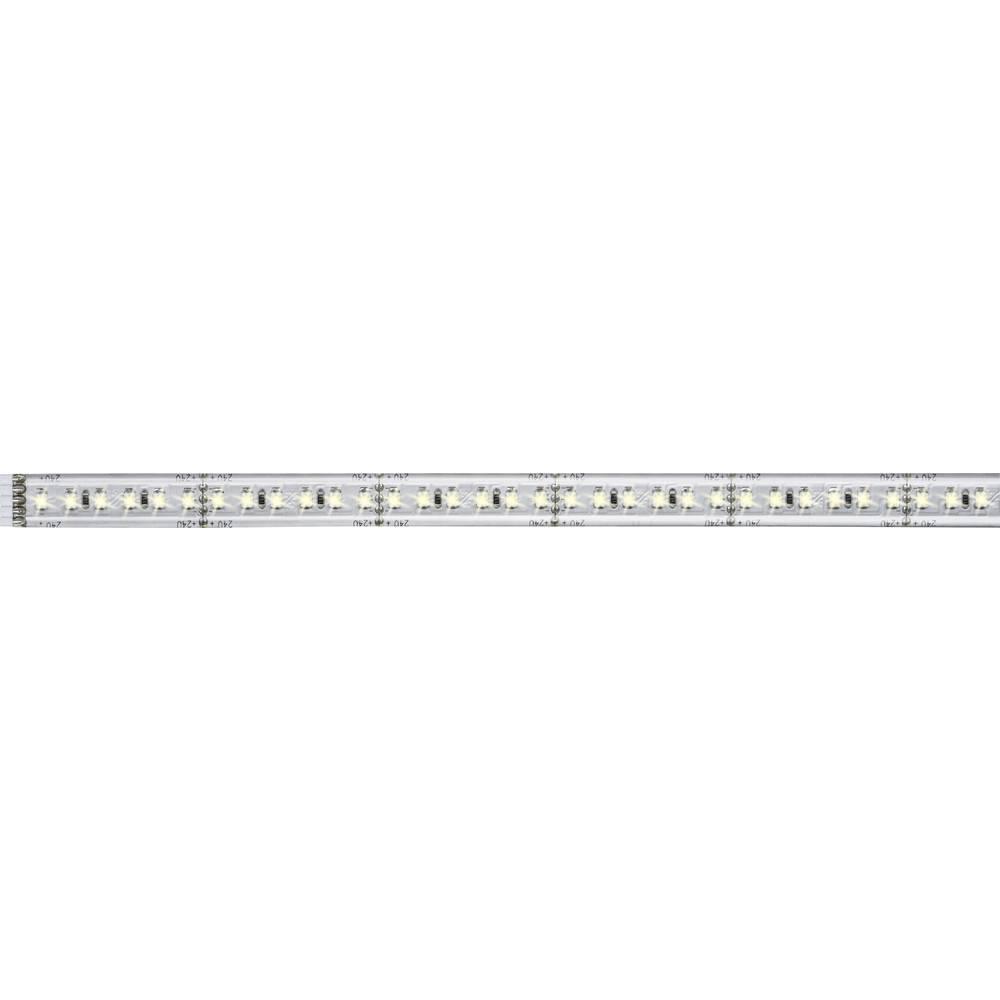 Razširitev za LED-trakove z vtičem 24 V 50 cm toplo-bele barve Paulmann MaxLED 1000 70659