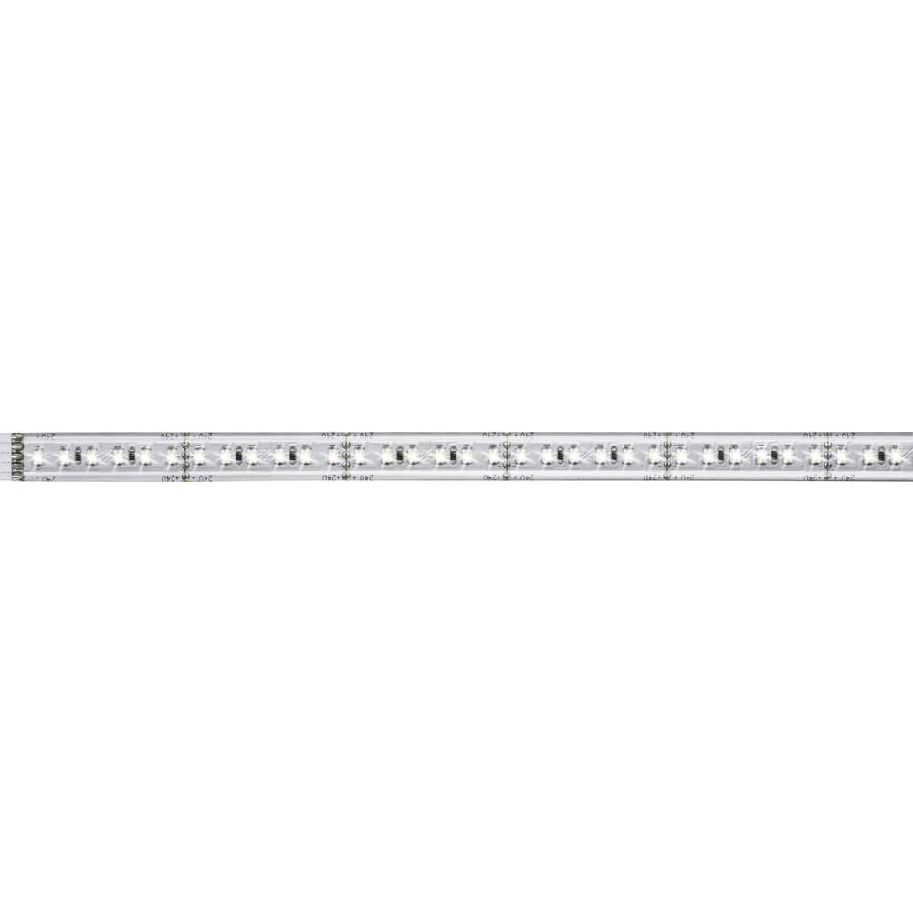 Razširitev za LED-trakove z vtičem 24 V 50 cm dnevno-bele barve Paulmann MaxLED 1000 70660