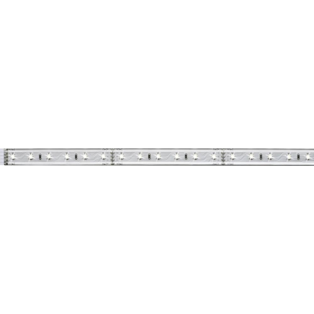 Razširitev za LED-trakove z vtičem 24 V 50 cm dnevno-bele barve Paulmann MaxLED 70662