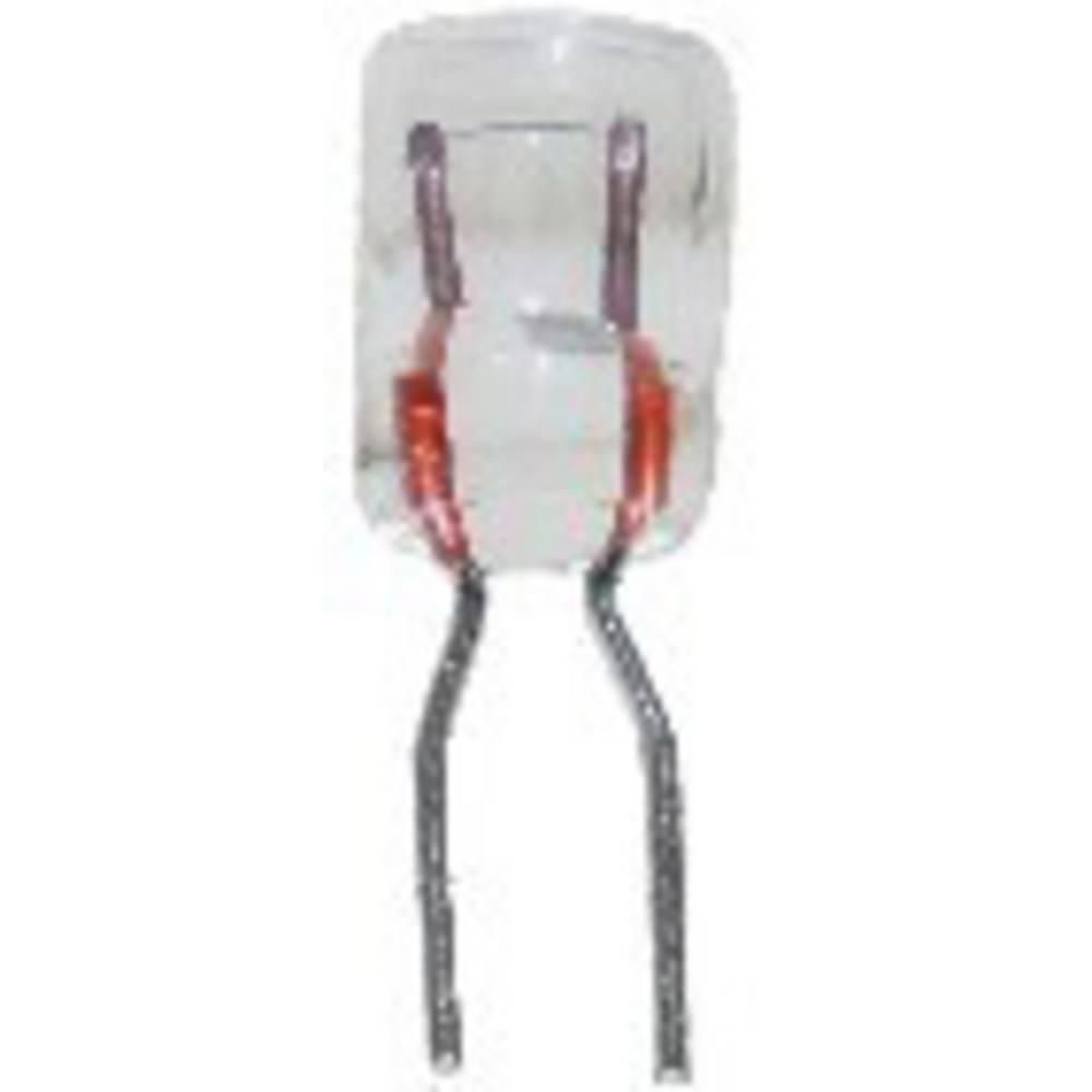 Vtične svetilke 5 V 0.15 W vtičnice primerne za BiPin prozorna BELI-BECO vsebuje: 1 kos