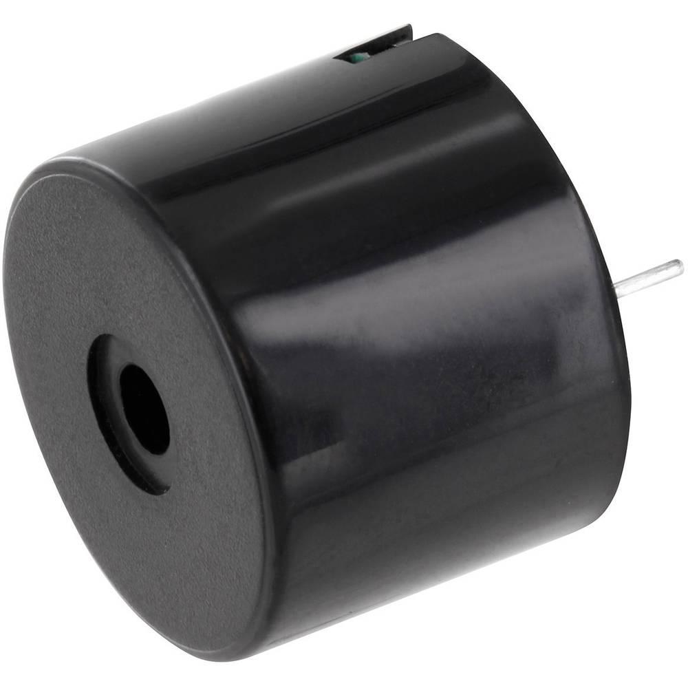 Miniature summer Støjudvikling: 95 dB Spænding: 12 V Kontinuerlig lyd (value.1730255) PSP231295 1 stk