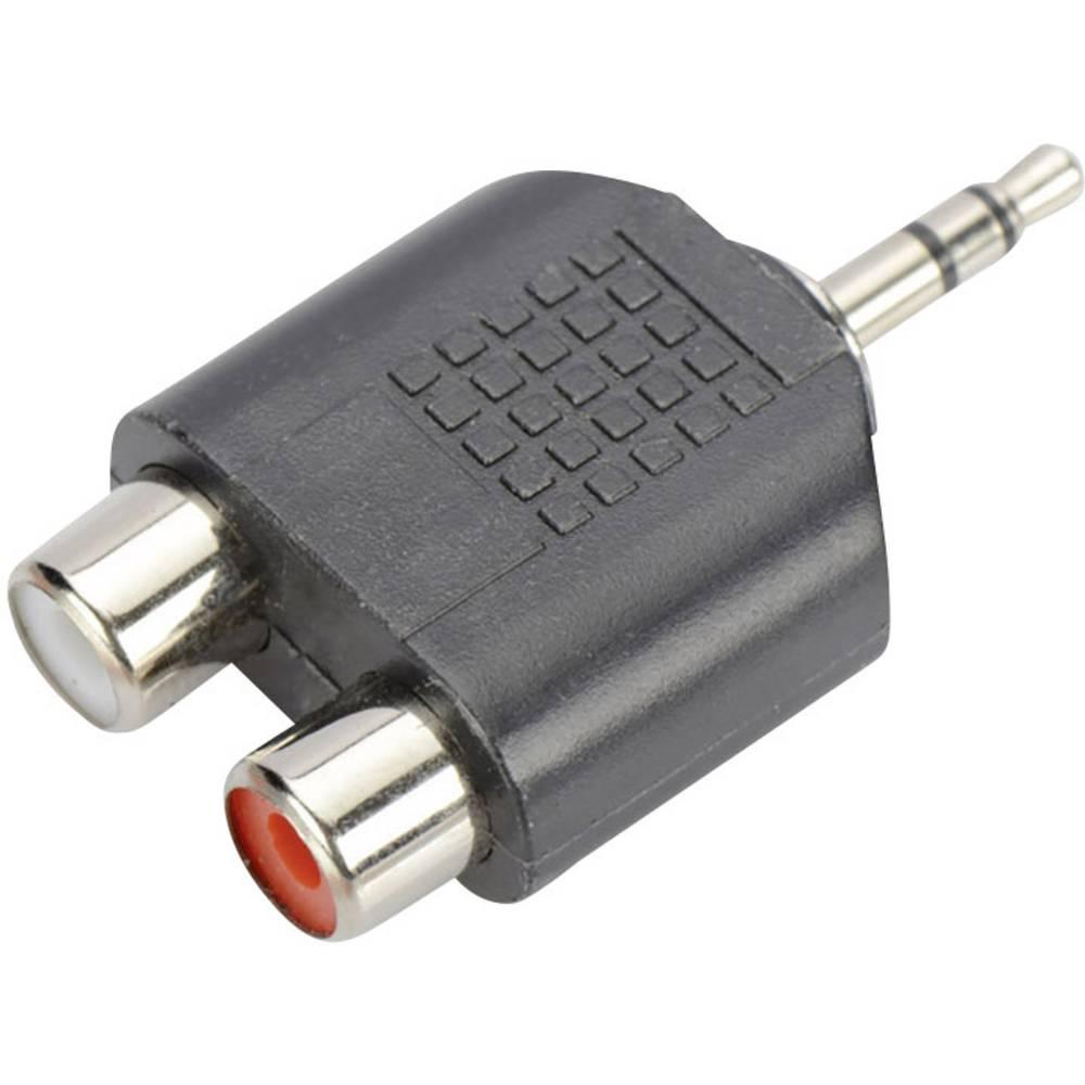 ednet klinker / cinch avdio y-adapter [1x 3,5 mm banana moški konektor - 2x ženski cinch konektor] črna