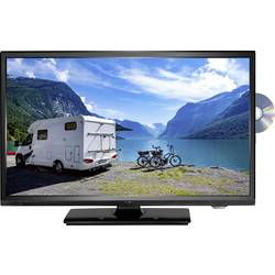 Reflexion LDDW19N LED-TV 47 cm 19 palec EEK A (A++ - E) DVB-T2, dvb-c, dvb-s, hd ready, DVD-player, ci+ črna