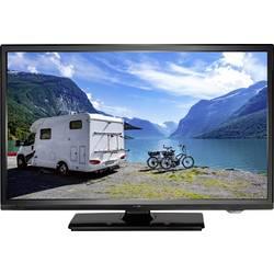 Reflexion LEDW19N LED-TV 47 cm 19 palec EEK A (A++ - E) DVB-T2, DVB-T2 hd, dvb-c, dvb-s, hd ready, ci+ črna