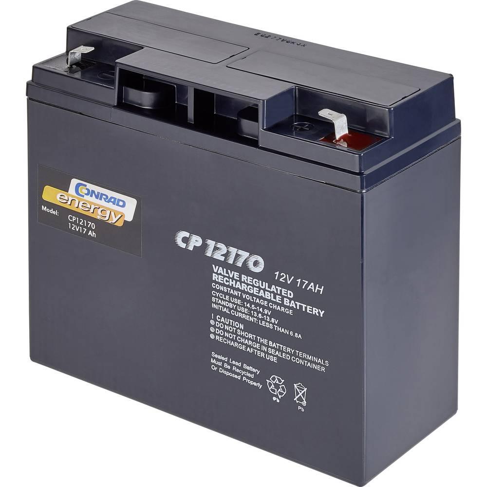 Svinčev akumulator 12 V 17 Ah Conrad energy CP12170 CE-1751303 svinčeno-koprenasti (AGM) (Š x V x G) 181 x 167 x 76 mm brez vzdr
