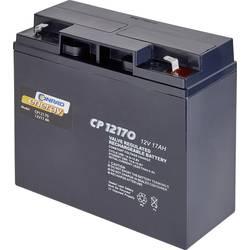 Blybatteri Conrad energy CE-1751303 12 V 17 Ah Blyfleece