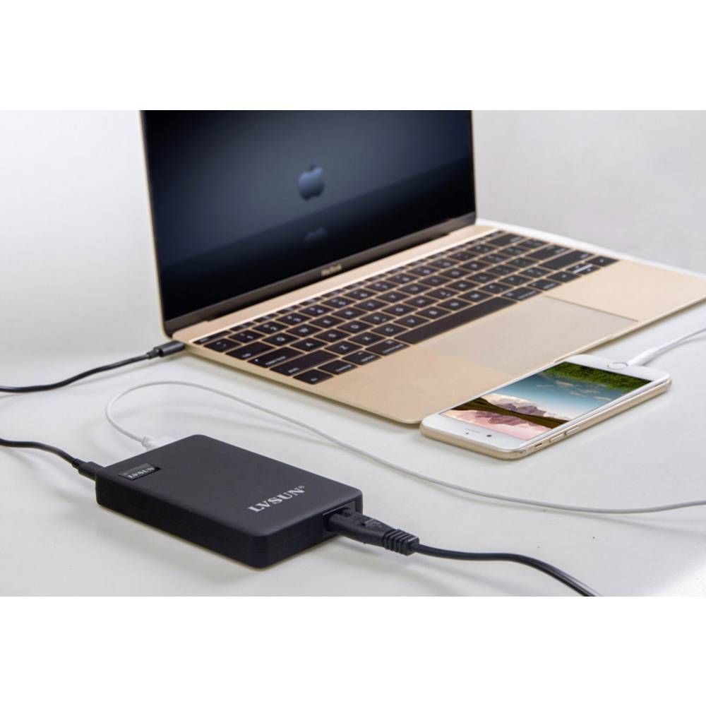 LVSUN 60W USB-C LS-PD60 USB polnilna postaja vtičnica Izhodni tok maks. 5000 mA 2 x ženski konektor USB 2.0 tipa a, ženski konek