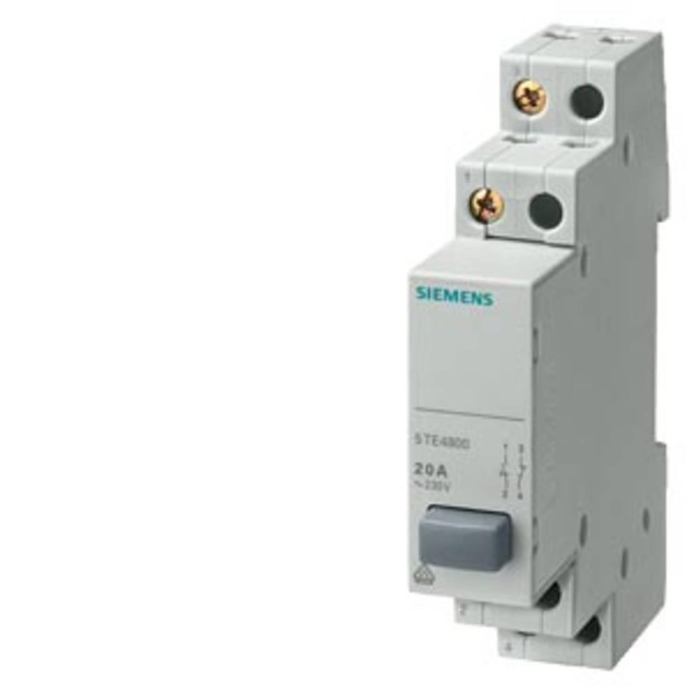 tipalo siva 20 A 2 zapiralo Siemens 5TE4804