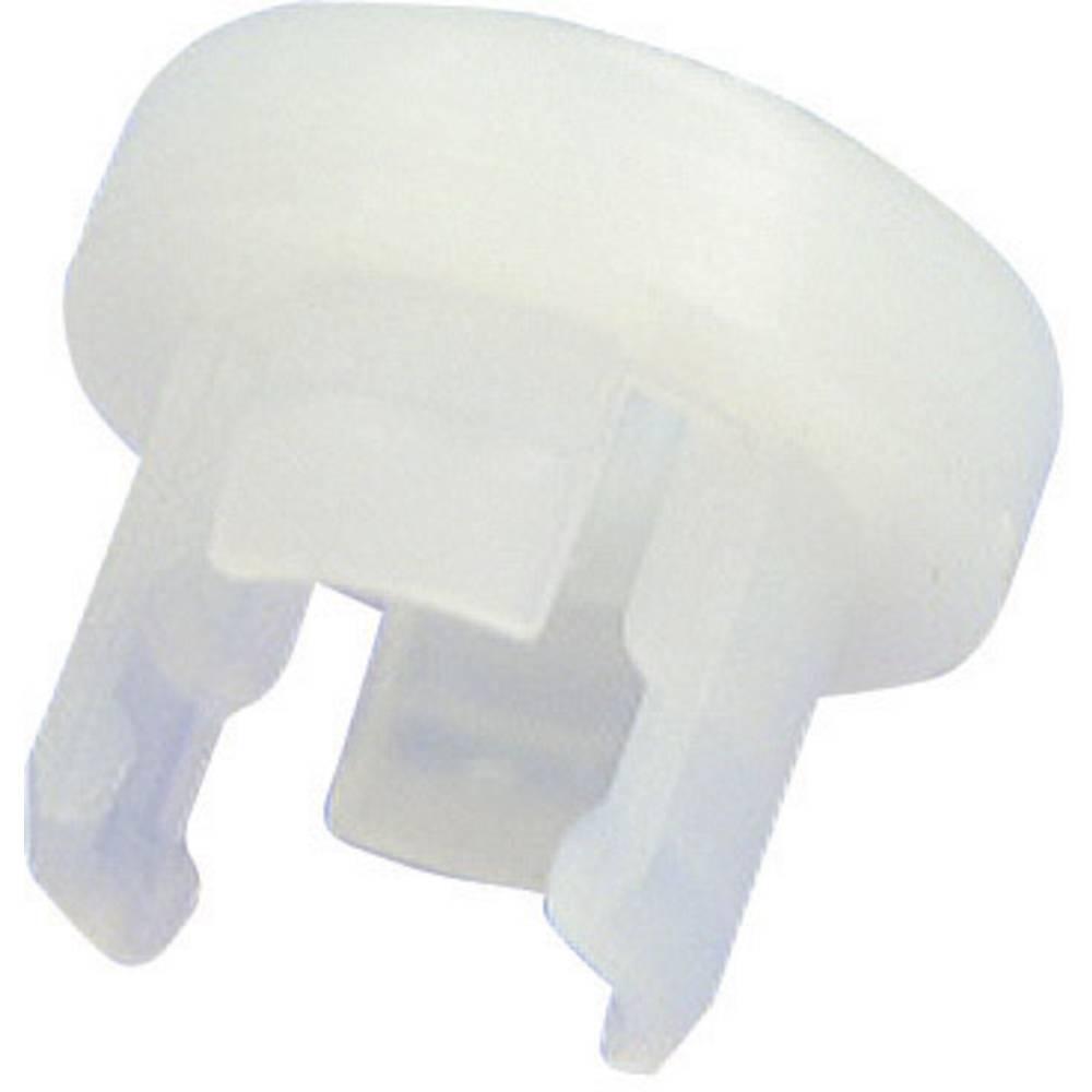 LED podnožje, poliamid 66 pogodno za LED 5 mm SnapIn Richco LEDHPM-1