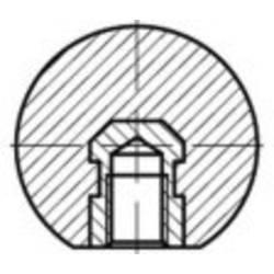 TOOLCRAFT DIN 319 plastični oblik E-MS crne kuglične ručice, E s navojem s navojem mjedene dimenzije: 25 M 6 25 St.