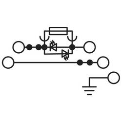 Phoenix Contact PT 4-PE/L/HESILED 24 (5X20) 3002603 Sigurnosna provodna stezaljka 0.20 mm² 4 mm² Siva 50 ST