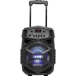 Prenosni zvočnik 20.3 cm 8  Denver TSP-110 10 W 1 KOS