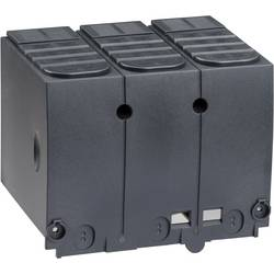Poklopac za stezaljke 250 A Schneider Electric LV429517 1 ST