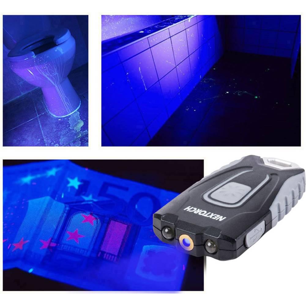 UV-LED, LED Potapljaška svetilka Nextorch GL20 UV Akumulatorsko 60 lm 17.5 g Sivo-črna