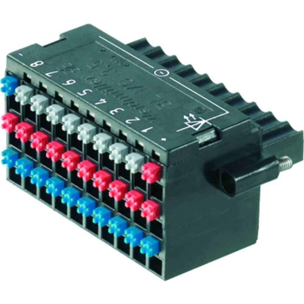 Tilslutningskabinet-kabel BL/SL (value.1360602) Samlet antal poler 30 Weidmüller 1789110000 Rastermål: 3.50 mm 20 stk