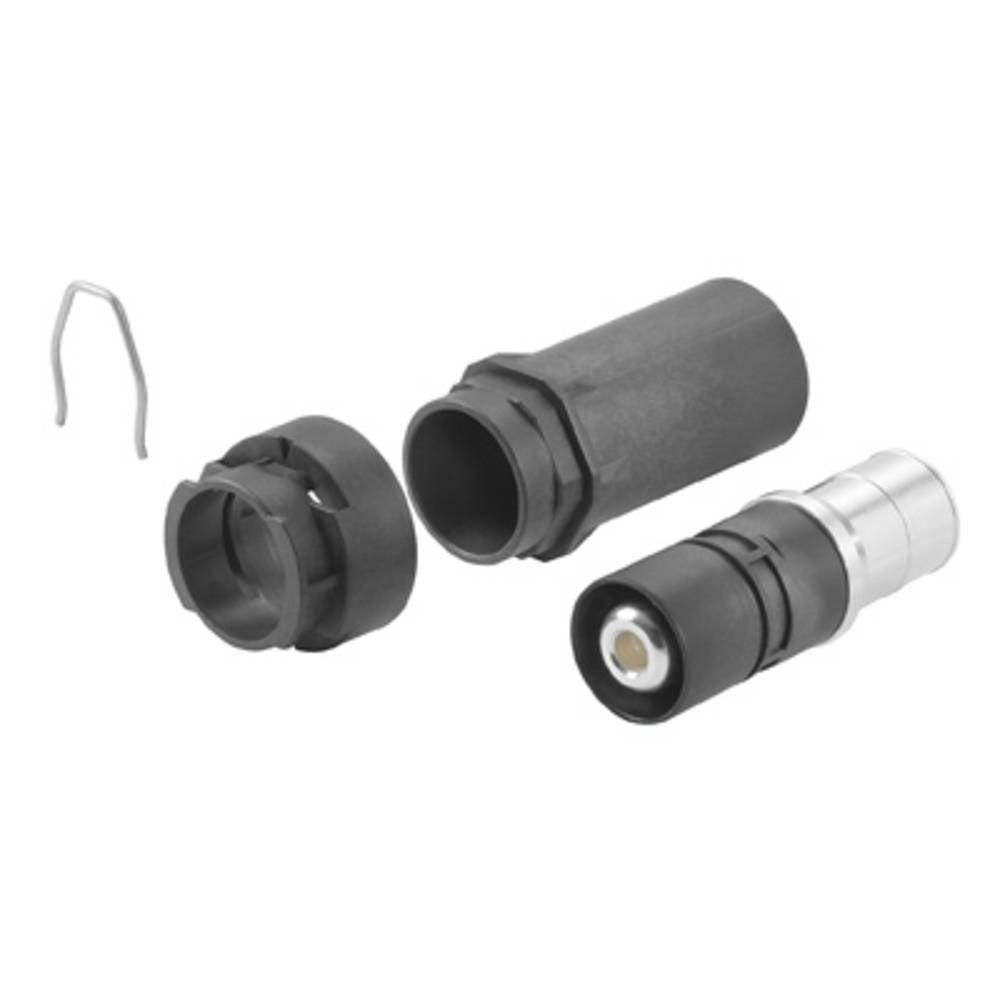 Objemni kontakt HDC HP 250 M 50 Weidmüller vsebuje: 1 kos
