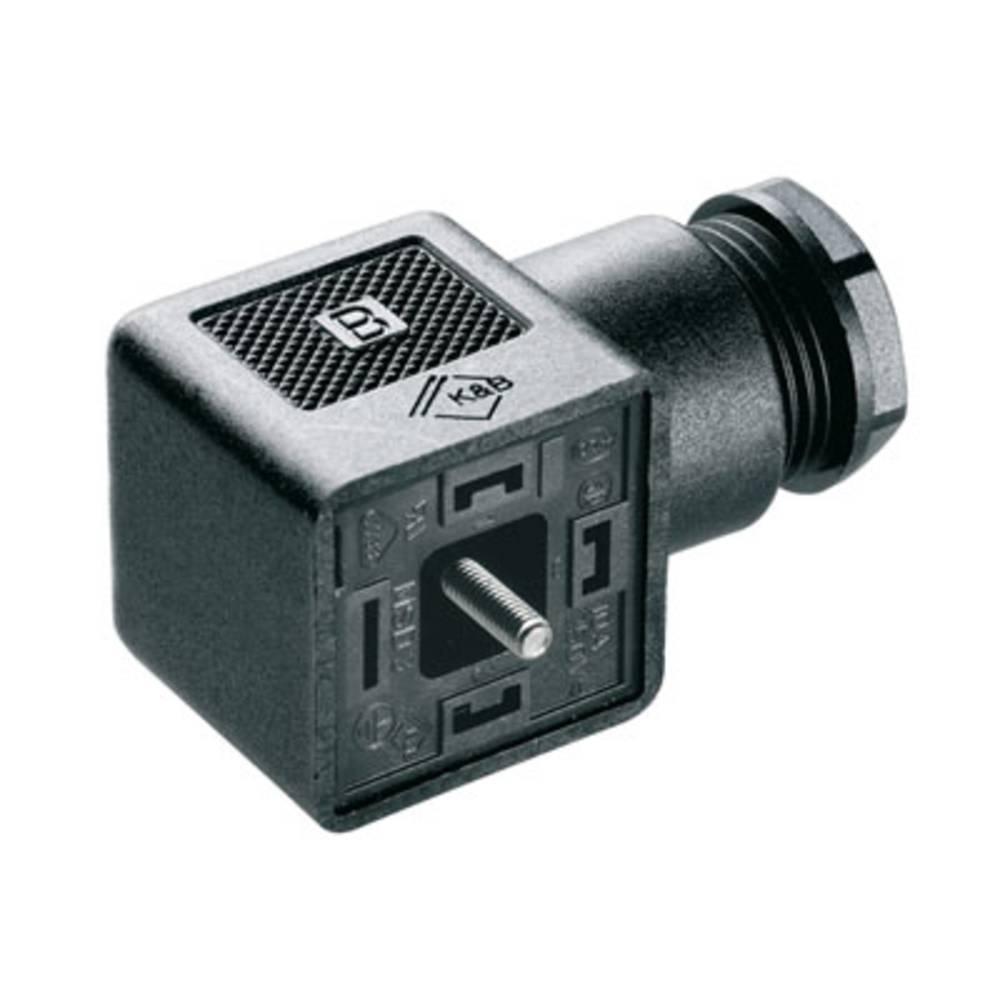 Sensor / Aktorsteckverbinder jack Weidmüller SAIB-VSA-4P/250/11-OB 1 stk